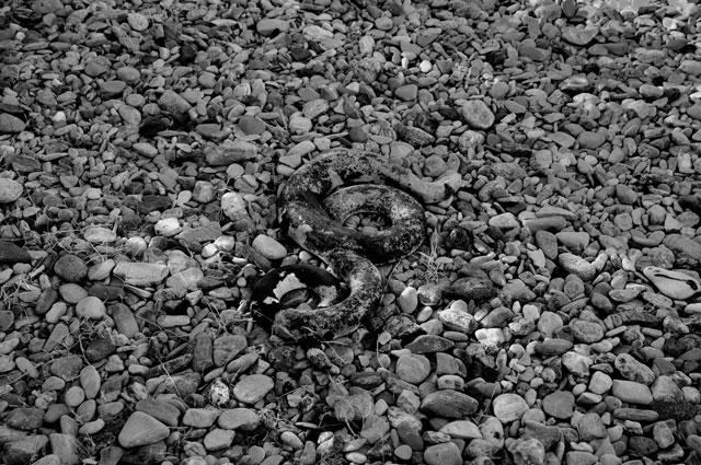 """""""Am Yılanı kule"""", Foto © Friedhelm Denkeler 2010"""