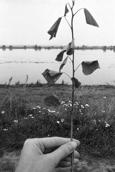 """""""Stillleben an der Elbe bei Schnackenburg"""", Foto © Friedhelm Denkeler 1980"""