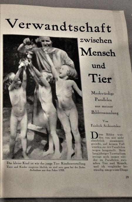 """""""Kirschenverteilung"""", Foto © Friedhelm Denkeler 2011"""