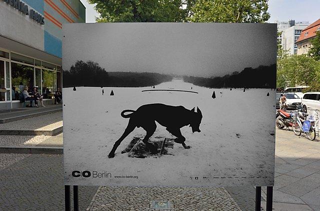 """Zur Ausstellung """"Invasion – Exiles – Wall"""" von Josef Koudelka bei C/O Berlin, Foto © Friedhelm Denkeler 2017"""